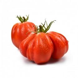 Pomodori Cuore di Bue 500gr.