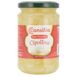 Cipolline Consilia 180r.